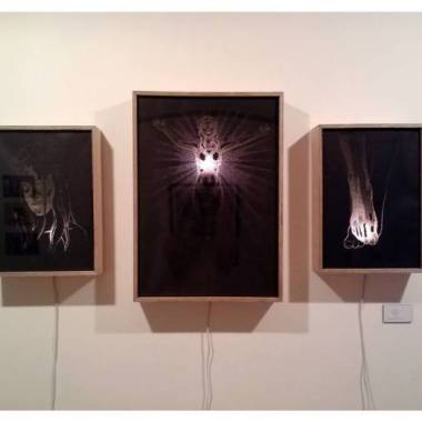 Scapegoat triptych, Pierced paper on light box, 2014