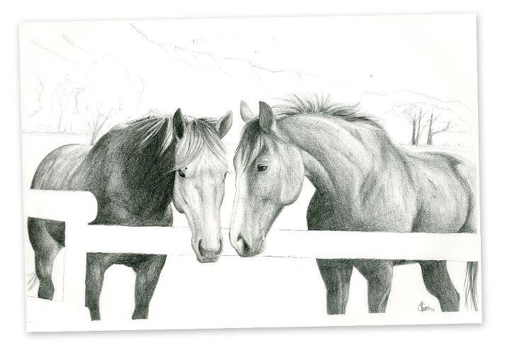 Horses, Pencil on Paper, 2012