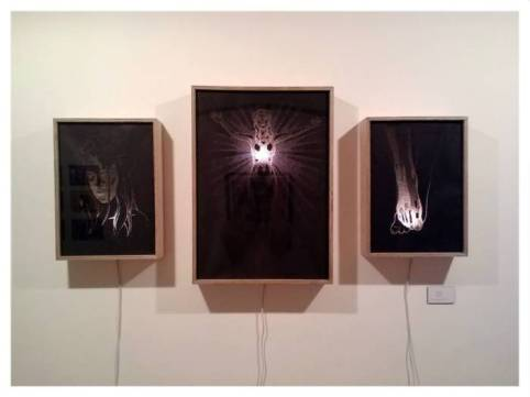 Scapegoat triptych, Pierced paper in light box, 2014