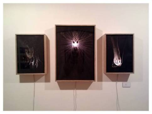 Scapegoat triptych, Pierced paper in light box, 2014